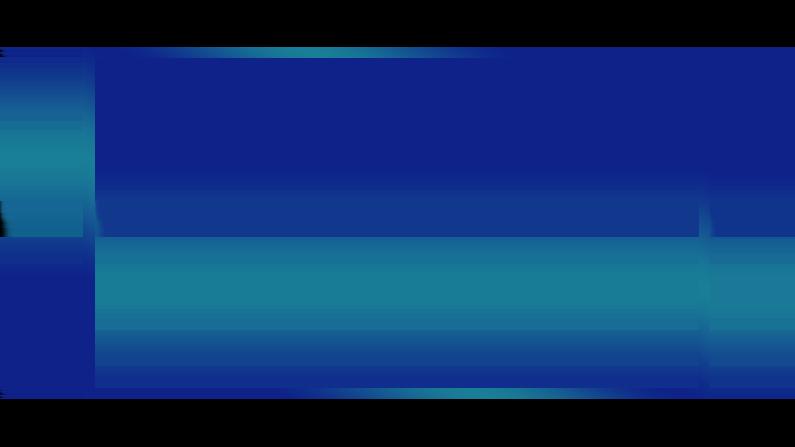 How Blue Ocean Webcam 16:9 overlay looks like